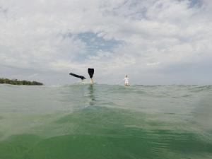 Peter, diving.  Heidi, paddlin'.